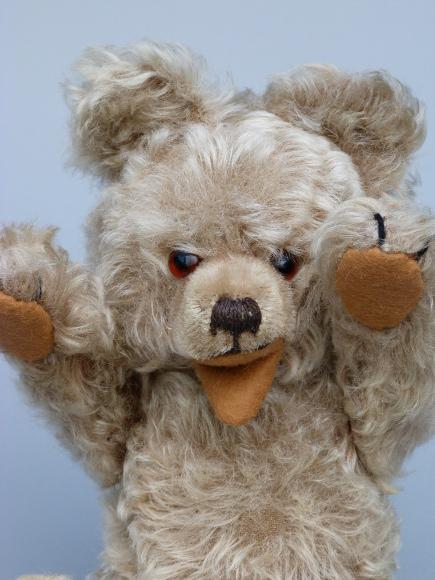 Teddydoktor