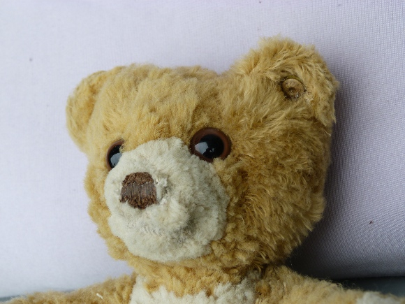 Restaurierter Teddy